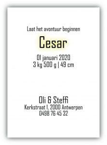 Geboortekaartje Collectie César
