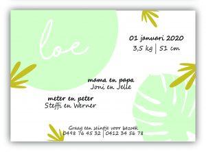 Geboortekaartje collectie Loe