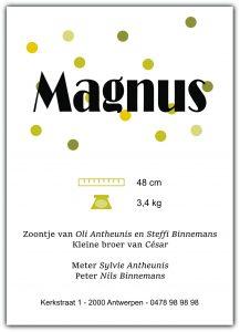 Geboortekaartje Collectie Magnus