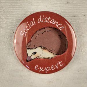 Social Distance Expert 1