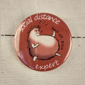Social Distance Expert 2