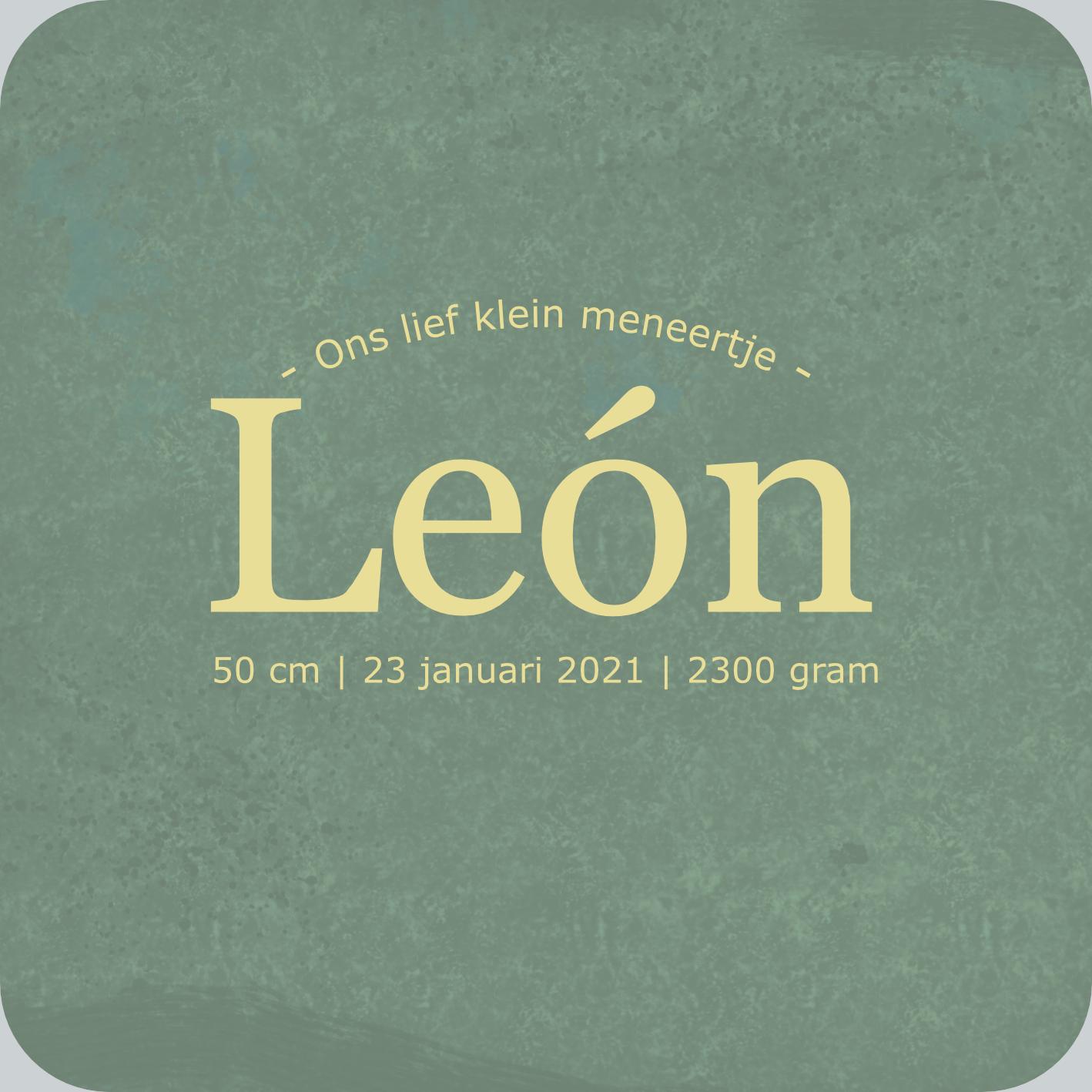 Leon Geboortekaartje